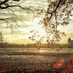 Studentenrabatte in Dresden: Alle Ermäßigungen auf einen Blick!